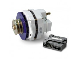 Alternador 24/75 con regulador Alpha Pro III