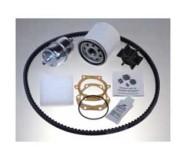 Kit de servicio generadores Panda 10000i y 10000 PMS